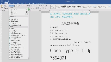 字体格式的设置